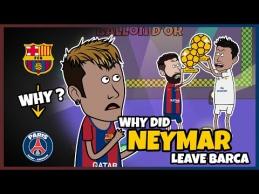 Istorinio Neymaro sprendimo esmė?